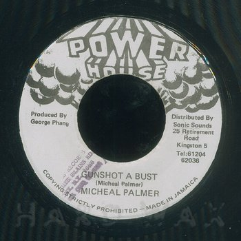 Cover art - Michael Palmer: Gunshot A Bust