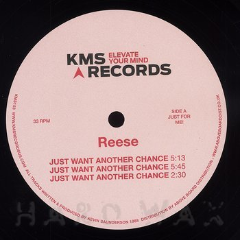 Cover art - Reese: Just Want Another Chance