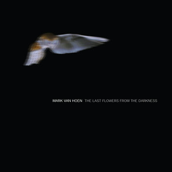 Cover art - Mark Van Hoen: Last Flowers From The Darkness