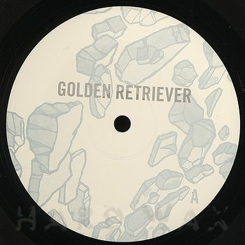 Cover art - Golden Retriever: Occupied With The Unspoken