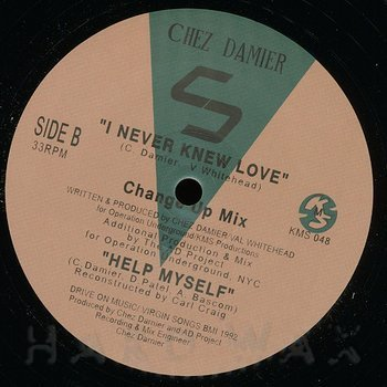 Cover art - Chez Damier: I Never Knew Love