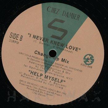 Cover art - Chez Damier: I Never Knew Love