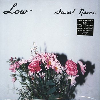 Cover art - Low: Secret Name