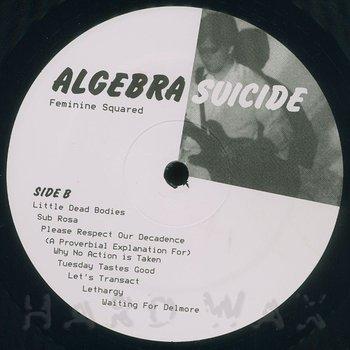 Cover art - Algebra Suicide: Feminine Squared