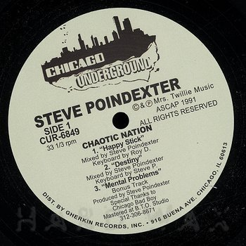 Cover art - Steve Poindexter: Chaotic Nation
