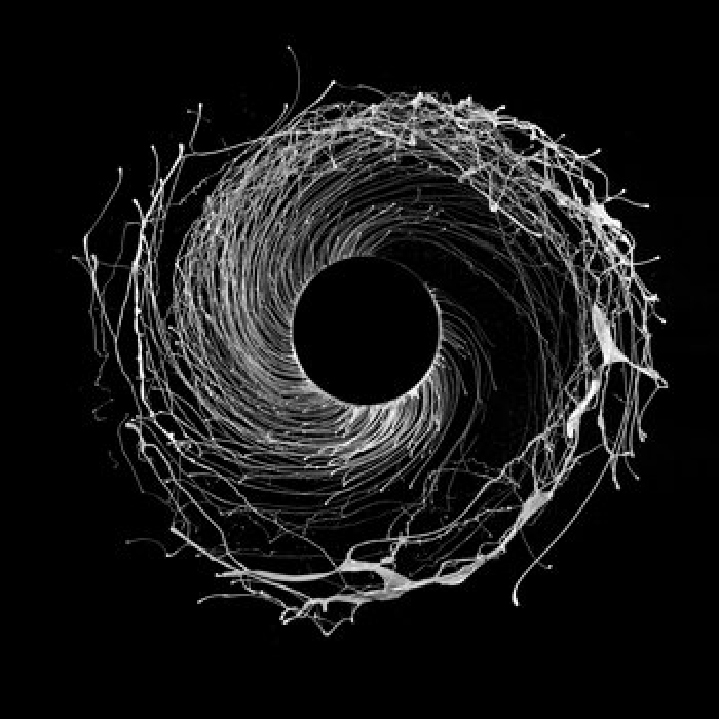 Cover art - Dawn of Midi: Dysnomia