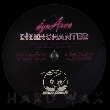 Cover art - Dynarec: Disenchanted