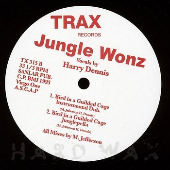 Cover art - Jungle Wonz: Bird In A Guilded Cage