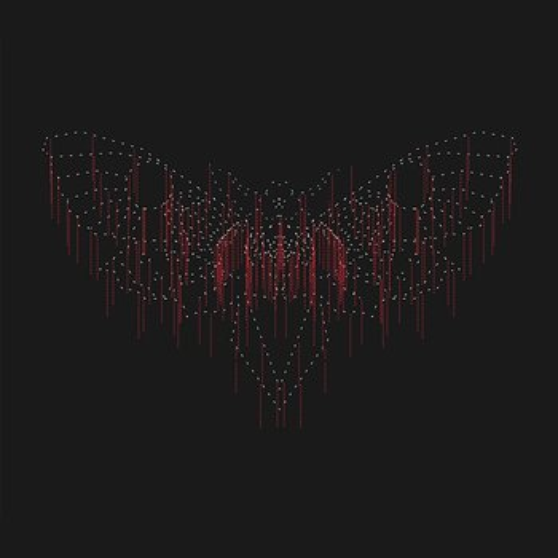 Cover art - John Beltran: Moth
