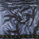Cover art - Lunatik: Pellicola