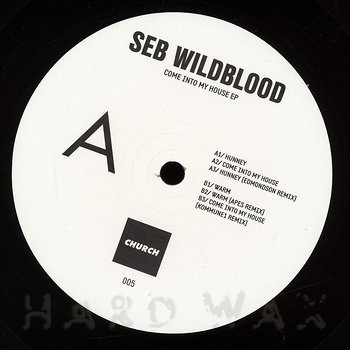 Cover art - Seb Wildblood: Come into My House EP