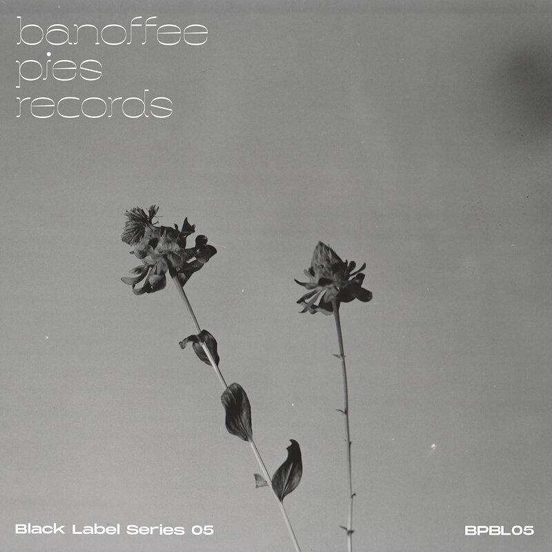Cover art - Various Artists: Black Label Series 05