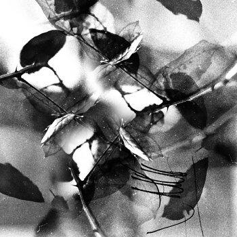 Cover art - Svarog: Isolation