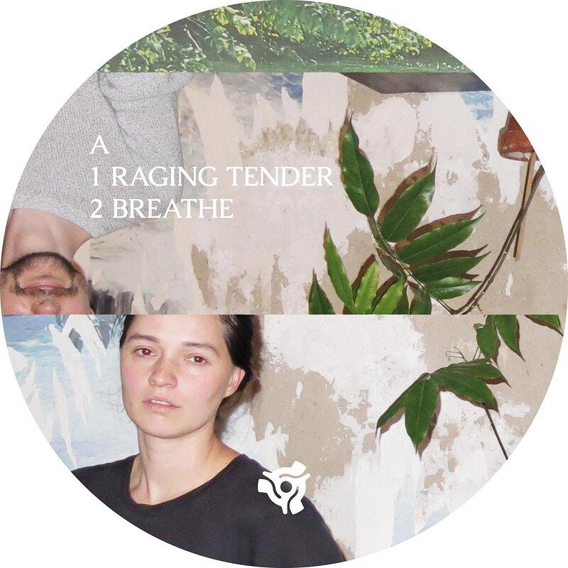 Cover art - Grebenstein & Seefried: Raging Tender