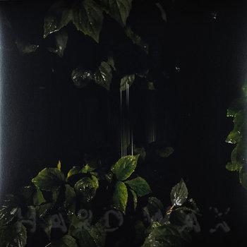 Cover art - Martina Bertoni: Music for Empty Flats