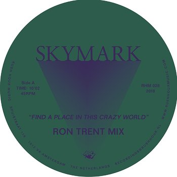 Cover art - Skymark: Find A Place In This Crazy World