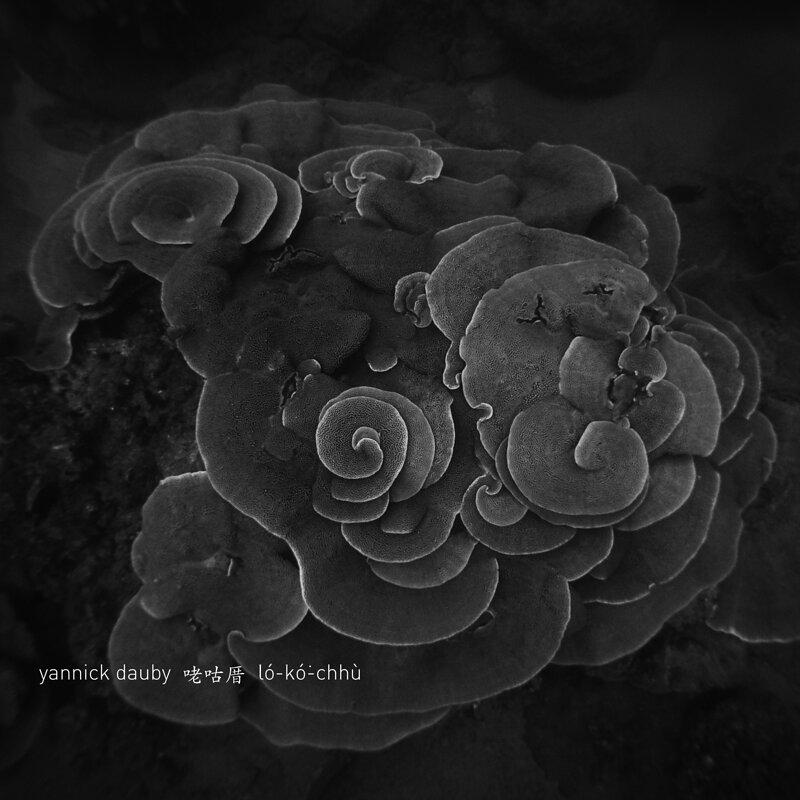 Cover art - Yannick Dauby: Coral House: Penghu Experimental Sound Studio, Vol. 2
