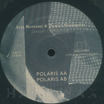Cover art - Aria Rostami & Daniel Blomquist: Distant Companion LP