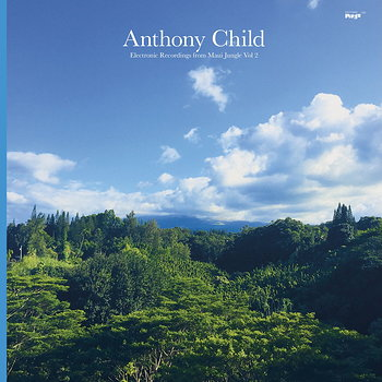 Cover art - Anthony Child: Electronic Recordings from Maui Jungle, Vol. 2