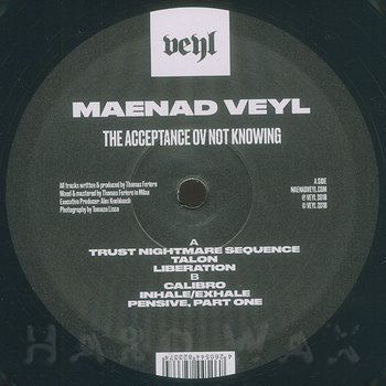Cover art - Maenad Veyl: The Acceptance Ov Not Knowing