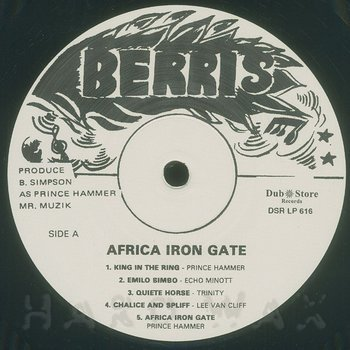 Cover art - Various Artists: Africa Iron Gate Showcase