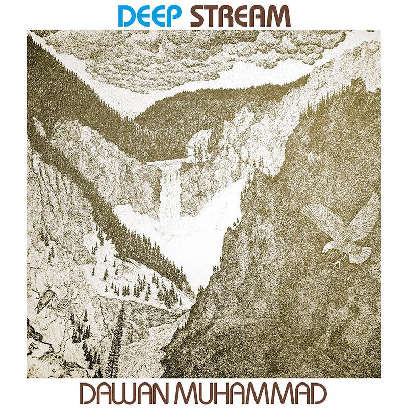 Cover art - Dawan Muhammad: Deep Stream