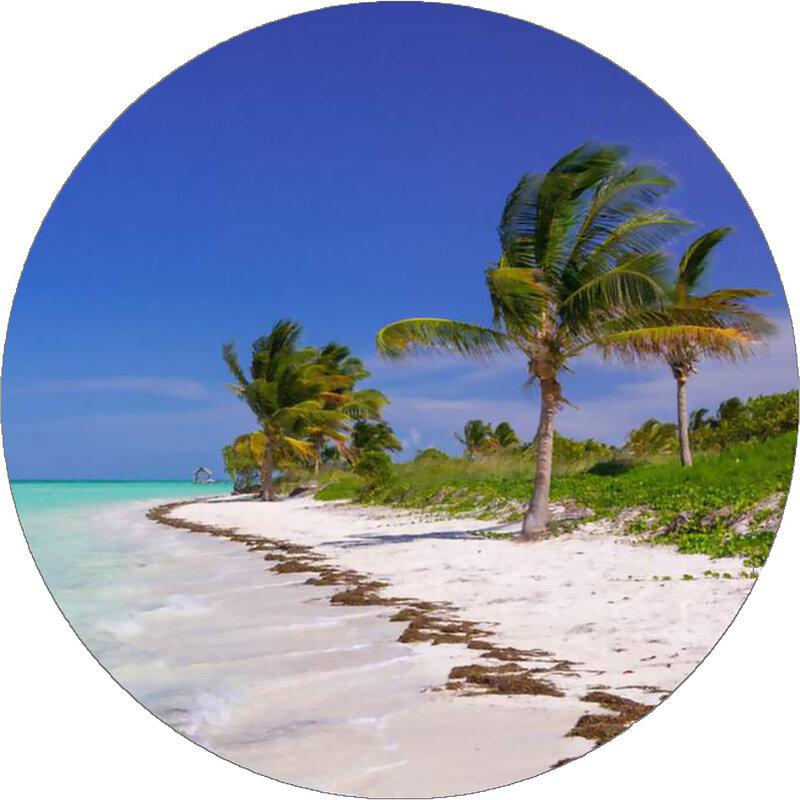 Cover art - X-Coast: Yucatan Channel