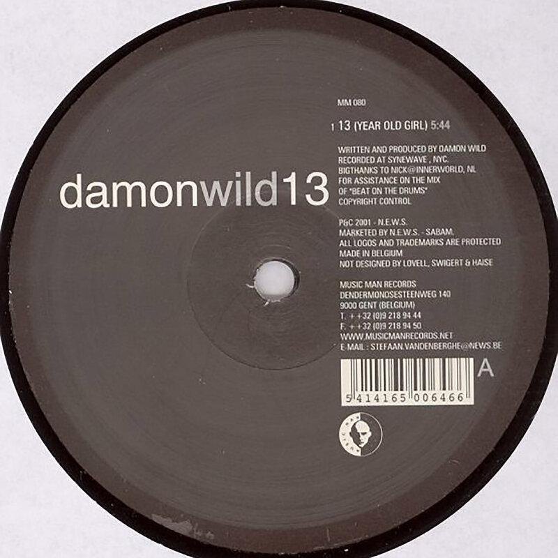 Cover art - Damon Wild: 13