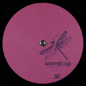 Cover art - Willow: Workshop 30