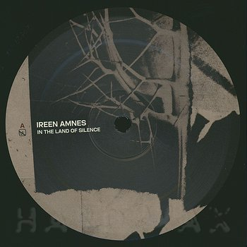 Cover art - Ireen Amnes: In the Land of Silence