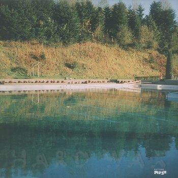 Cover art - NPVR: 33 33