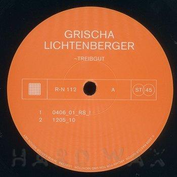 Cover art - Grischa Lichtenberger: Treibgut