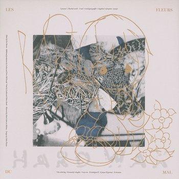 Cover art - Rabit: Les Fleurs Du Mal