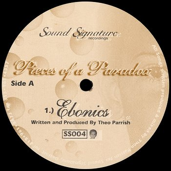 Cover art - Theo Parrish: Pieces Of A Paradox