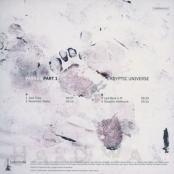 Cover art - Kryptic Universe: Passau Part 1