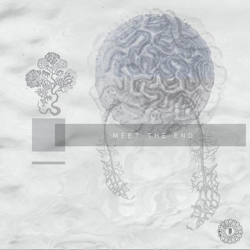 Cover art - Various Artists: Meet The End