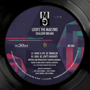 Cover art - LoopZ The Maestro: Shallow Dreams