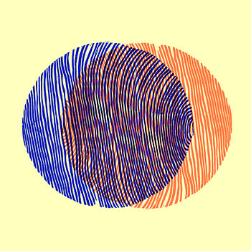 Cover art - Keith Fullerton Whitman / Floris Vanhoof: Split