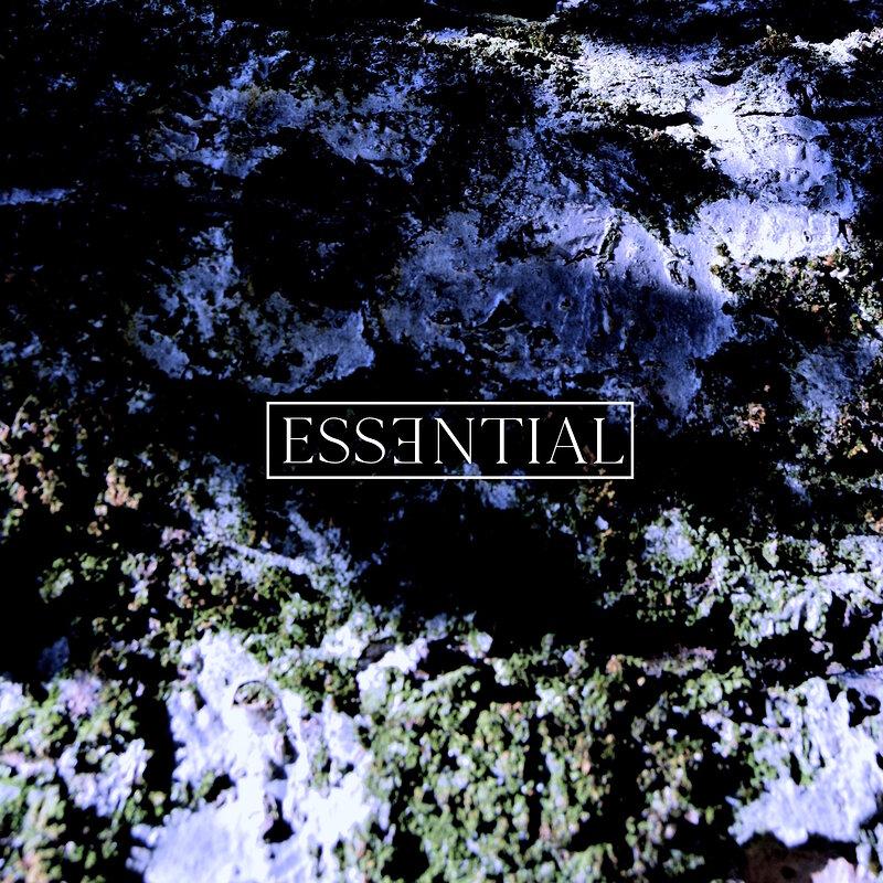 Cover art - Evod: Essential 009