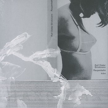 Cover art - Thomas Brinkmann: Raupenbahn