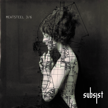 Cover art - Various Artists: Meatsteel 3.4/6