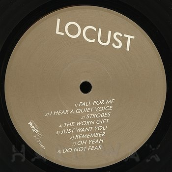 Cover art - Locust: You'll Be Safe Forever