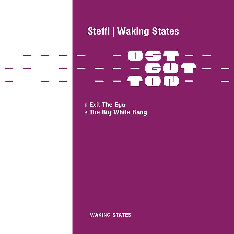 Cover art - Steffi: Waking States