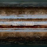 Cover art - Kaan Pirecioglu: Essential 008