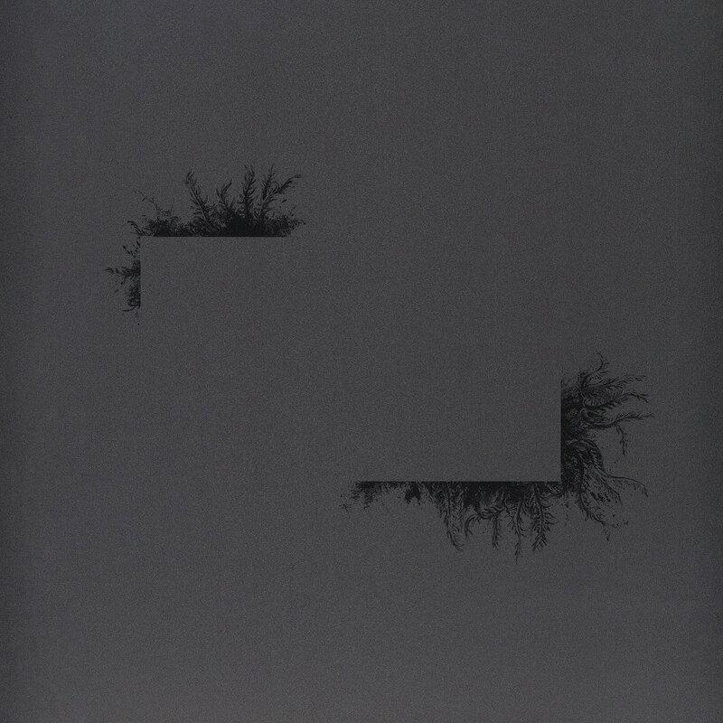 Cover art - Felix K: Flowers Of Destruction