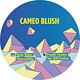 Cover art - Cameo Blush: Murky Waters EP