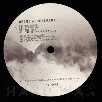 Cover art - Wrong Assessment: End of Contemplation