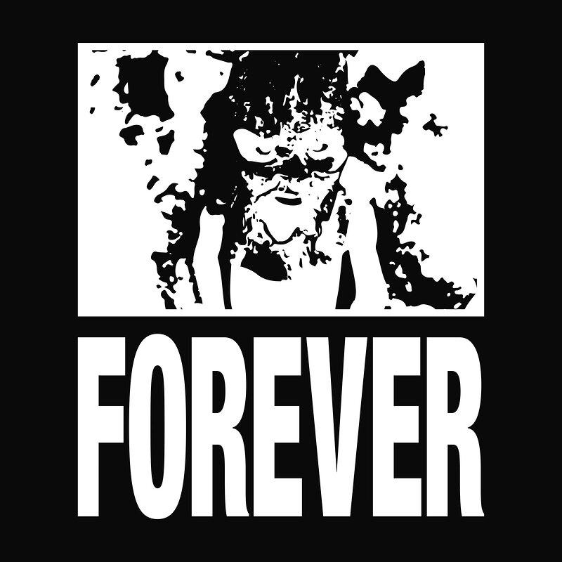 Cover art - Forever: Coarse