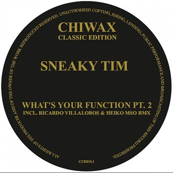 Cover art - Sneaky Tim: What's Your Function Pt. 2