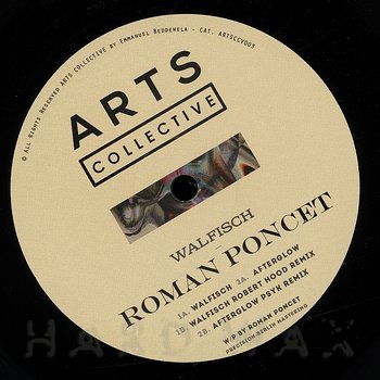 Cover art - Roman Poncet: Walfisch